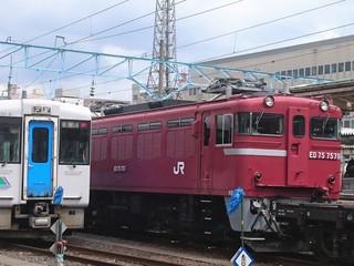 DSC_1439 (2).JPG